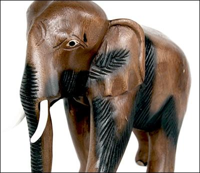 Elephants / Mammoths