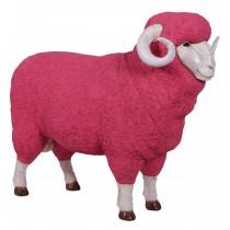 Merino Ram - Pink - 110cm