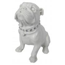 Bulldog Sitting White