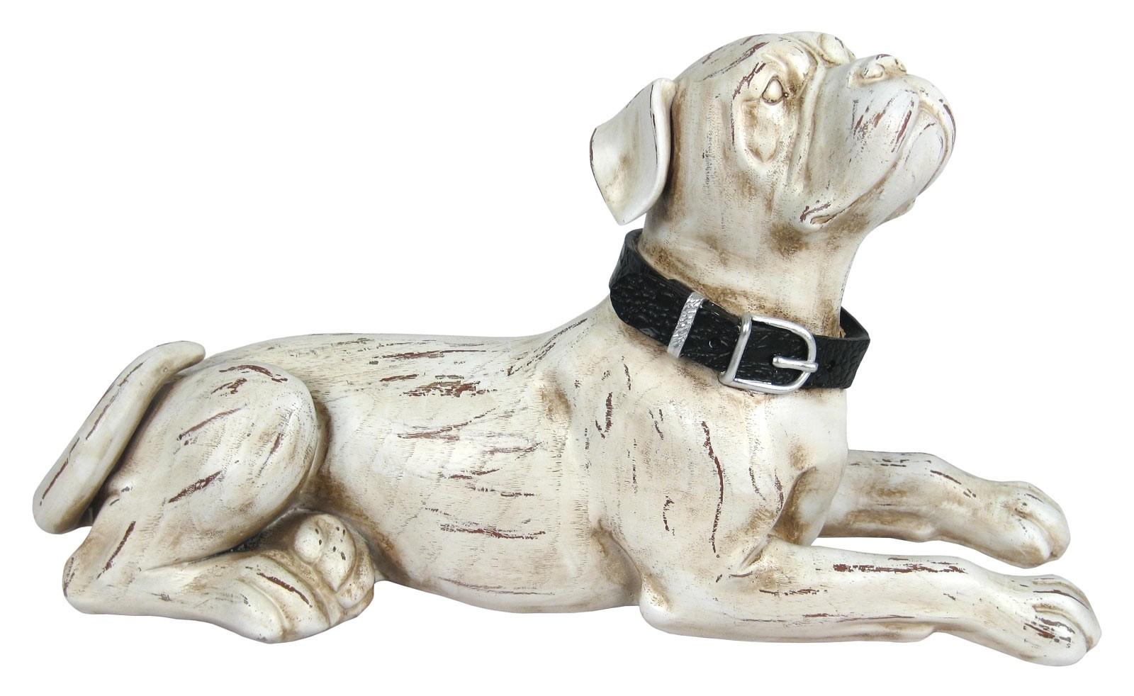 Bulldog Lying Down