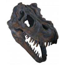 T-rex Skull Wall Art 51.5cm