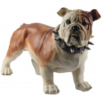 Bulldog Standing 54.5cm