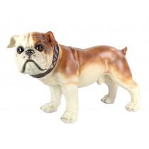 Bulldog  69.5cm