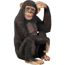 Chimpanzee - 70cm