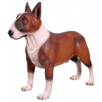 Bull Terrier Brown - 85cm